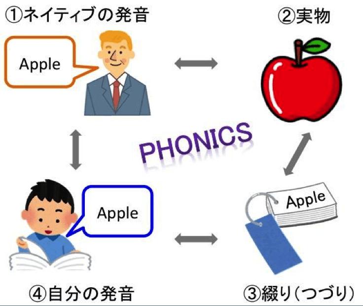 英語圏の子供たちは、日常生活の中でも、自然にフォニックスの①〜④のサイクルを回して、正しい英語を身につけていけます。例えば、母親とのスーパーマーケットの