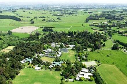 ニュージーランドの高校があった田舎の景色