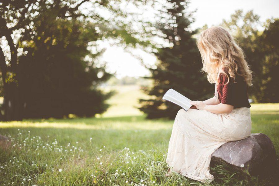 【英語学習に役立つ本の紹介】~美しい描写の中で印象に残る言葉を紙に書き留めよう~ Brida(ブリーダ)