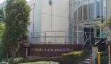 全員が海外研修に参加する、桜丘中学・高等学校
